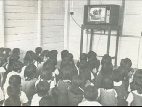 Television may be the equaliser that education needs