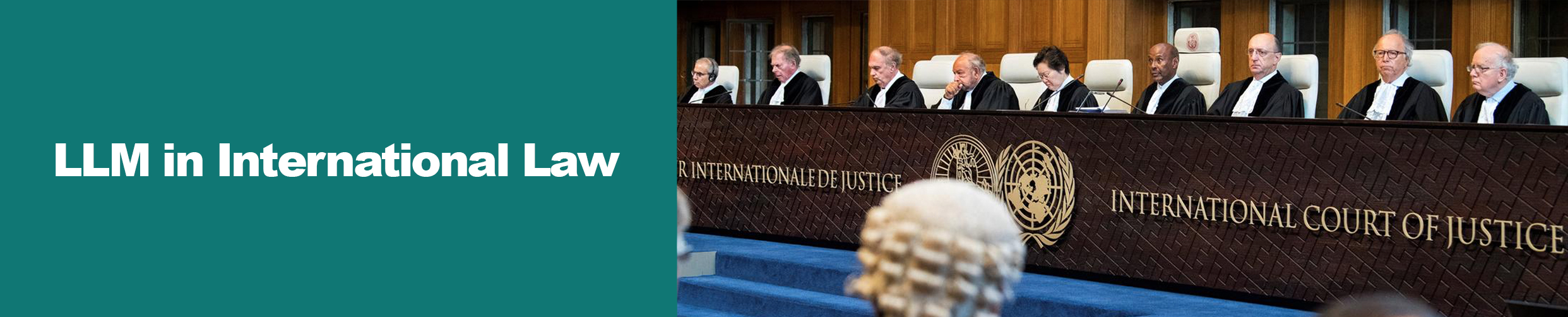 Master of Laws (LLM) in International Law